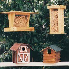 Bird Shelter & Feeder