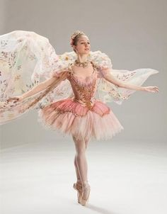 This ballerina looks like a fairy! Just beautiful! This almost looks the the ancient tutu everyone at Canyon school of Dance. Tutu Ballet, Ballet Dancers, Ballerinas, Ballerina Costume, Cinderella Costume, Ballerina Dress, Ballet Russe, Fantasias Halloween, Ballet Photography