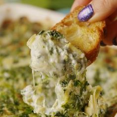 Appetizer Recipes Discover Ultimate Spinach Artichoke Dip The best version of the classic dip de espinacas Dip Recipes, Mexican Food Recipes, Appetizer Recipes, Dinner Recipes, Cooking Recipes, Healthy Recipes, Dinner Ideas, Dip Appetizers, Cooking Tv