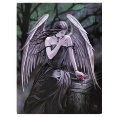 Stunning Anne Stokes Wall Canvas - Lost Soul (Angel) on eBid United Kingdom Anne Stokes, Dark Beauty, Beauty Art, Gothic Beauty, Fantasy Dragon, Fantasy Art, Anime Fantasy, Angel Drawing, Rose Pictures
