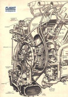 rolls-royce-kestrel-supercharger-cutaway.jpg (850×1204)