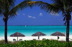 Turks and Caicos - Could visit here over and over again..we love Turks!