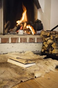 a fire..a cup of coffee or hot chocolate..a good book..under a blanket...yes ~sunflowersandsearchinghearts