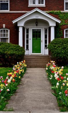 Hundreds of bulbs planted along a front walk. LOVE LOVE LOVE!! Courtesy of *April*'s photostream