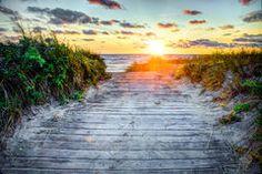 Avena Y Playa Del Mar - Descarga De Over 67 Millones de fotos de alta calidad e imágenes Vectores. Inscríbete GRATIS hoy. Imagen: 6870235