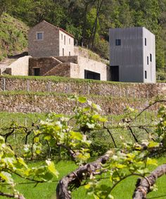 correia/ragazzi arquitectos restores and expands a rural winery in northern portugal