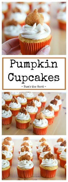 These Pumpkin Spice Cupcakes are bakery style gourmet that are perfect for any pumpkin lover. Topped with Pumpkin Spice Buttercream Frosting. Gourmet Cupcakes, Fruit Cupcakes, Cupcake Bakery, Pumpkin Cupcakes, Pumpkin Dessert, Low Carb Desserts, Easy Desserts, Delicious Desserts, Best Dessert Recipes
