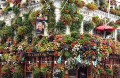 Churchill Arms is the best London photography location London Map, London Places, London Travel, Famous Pubs In London, Peggy Porschen Cakes, London Instagram, Sky Garden, Garden Pictures, London Photography