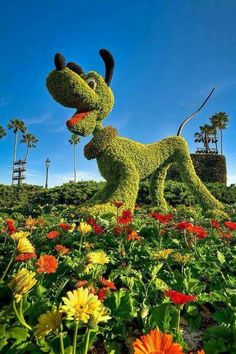 Pluto topiary at Epcot - 'Who Let The Dog Out?' - photo by SpreadTheMagic, via… Amazing Gardens, Beautiful Gardens, Disney Garden, Topiary Garden, Topiaries, Topiary Trees, Formal Gardens, Modern Gardens, Japanese Gardens