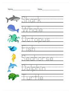 Simple tracing worksheet with ocean animal pictures for kindergarten or preK/preschool. The free worksheet pack includes addition, matching, fun facts, and (of course) simple handwriting worksheets! Alphabet Tracing Worksheets, Animal Worksheets, Handwriting Worksheets, Preschool Learning, Kindergarten Worksheets, Preschool Alphabet, Alphabet Crafts, Handwriting Practice, Alphabet Letters