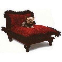 Dog Celebrity bed