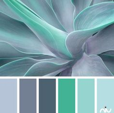 Color palettes 357191814196525691 - Color Inspiration Turquoise Color Palette Paint Inspiration- Paint Colors- Paint Palette- Color Source by vgillant Scheme Color, Colour Pallette, Colour Schemes, Color Combos, Grey Palette, Best Color Combinations, Color Schemes For Bedrooms, Color Schemes With Gray, Kitchen Color Schemes