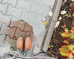 Ale plucha cha cha... #plucha #jesień #złotajesień #zlotajesien #warsaw #varsavia #autunno #autumn