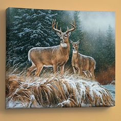 """IN THE STORM - WHITETAIL DEER by Rosemary Millette 