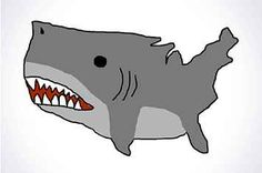 15 Reasons Sharks Should Be The Official Animal Of America