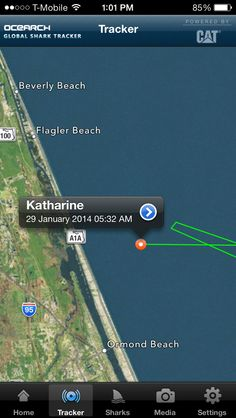 Katharine a 14ft+ female #WhiteShark pinged in this morning heading west towards #OrmondBeach, FL! She has traveled over 32 miles in the last 24 hours. Track her at http://www.ocearch.org