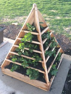Strawberry pyramid planter finally done! Plans from http://www.runnerduck.com/strawberry_tree.htm