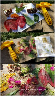 Pounding Colors from Nature #MGTblogger