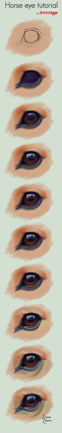 horse drawing tutorial horse eye                                                                                                                                                                                 More