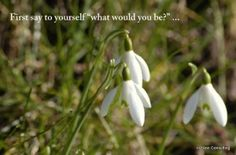 Are you what you want to be or dream of being?