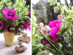 Anemonen, Flower-Friday, Heidelbeerkraut