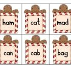 What a fun way to learn about real and nonsense words! I've included 6 real words for each vowel and 6 nonsense words for each vowel. You can work ...