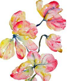 Shower Tree Petals Watercolor, Print 8x10, Watercolor Flowers. $19.00, via Etsy.