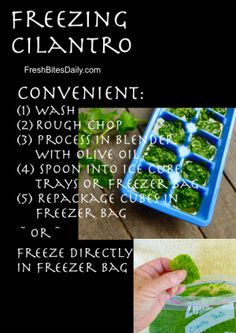 Freezing Cilantro the flavor fades VERY fast, I want it at it's peak so this may just meet the bill A Food, Good Food, Yummy Food, Gf Recipes, Raw Food Recipes, Freezing Cilantro, Sauces, Smoothies, Fruits And Veggies