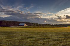 Golden Field Golden light over a lovely field Country Life, Places To Visit, Barn, Clouds, Mountains, Landscapes, Photograph, Travel, Outdoor
