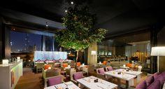 Roberto's DIFC Dubai : The fine Italian dining restaurant