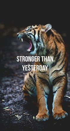 Be motivated my friend,motivation is everything. With motivation you will have succes you want. So don't let your motivation to die. Fitness Motivation Wallpaper, Fit Girl Motivation, Fitness Motivation Quotes, Workout Motivation, Weekend Motivation, Employee Motivation, Tiger Quotes, Lion Quotes, Quotes Quotes