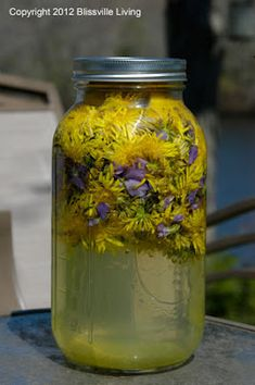 Dandelion and Violet Lemonade