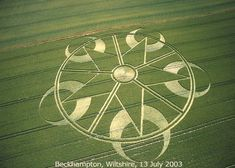 Crop circles | The Mystery about Crop circles