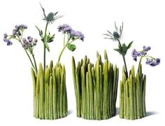 These 10grass trio of vases is fun.