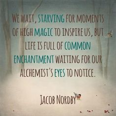 We wait, starving for moments of high magic to inspire us, but life is full of common enchantment waiting for our alchemist's eyes to notice.