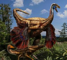 Many of the feathered dinosaurs found in China are older than Ornithomimus. Description from carnivoraforum.com. I searched for this on bing.com/images