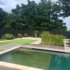 No more chemicals or pool guy bills—your natural swimming pool will clean itself.
