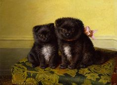 Horatio Henry Couldery -Sitting Pretty (Chow Pups).19th century painting of silly little dogs