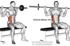Seated barbell twist exercise https://www.musclesaurus.com/