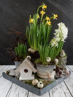Voorjaarsbloemen op mij tafel met narcissen, hyacinten en blauwe druifjes. Een DIY staat op mijn blog Homemade by Joke.