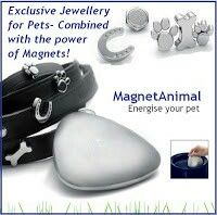 www.magnetixhealth.co.uk Water bowl pebble. And collar accessories.
