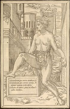 The anatomical figure sits on a fanciful throne, with a leg casually propped up on the framed caption. In the upper left, a solitary figure looks on from atop a parapet.  De dissectione partium corporis humani... Paris, 1545. Woodcut. National Library of Medicine.  Charles Estienne (1504-ca. 1564) [author] Étienne de la Rivière (d. 1569) [anatomist]