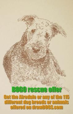 I will donate one dog art print, drawn from only words, to your animal rescue or animal shelter fundraiser when you purchase one for yourself or as a gift. http://drawdogs.com/product/free-dog-rescue-art/dog-rescue-animal-shelter-fundraiser-art-print-bogo/