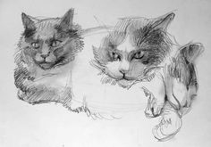 """the cats of A&M Aviation """"Turbo and Jet"""" pencil in sketchbook 2011"""
