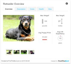 Dog Breeds That Get Lost the Most ROTTWEILER © FindTheBest