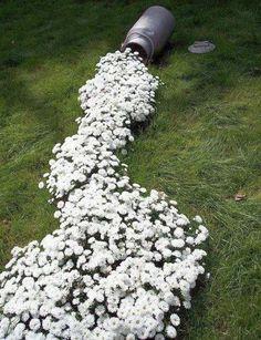 idei de amenajare a gradinii cu flori flower garden landscape ideas 1