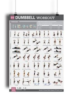 """Are you missing key exercises in your routine?And is that keeping you from reaching your goal?Our """"Dumbbell Workout Poster"""" will show you the absolute best dumbbell exercises to build the body you want.Dumbbells are one of the oldest, most commonly used free weights for adding strength, muscle tone, burning and losing fat.—They are extremely effective, yet super easy to use.The dumbbell exercises on this poster work your core (abs, lower back, glutes, legs) as well as the upper-body (arms…"""