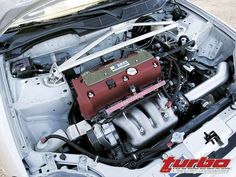 Good looking Honda Civic engine bay with a wire tuck, and