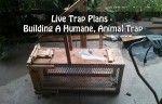 Live Trap Plans – Building A Humane, Animal Trap