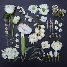 WHITE- the garden collection 10x10 square print